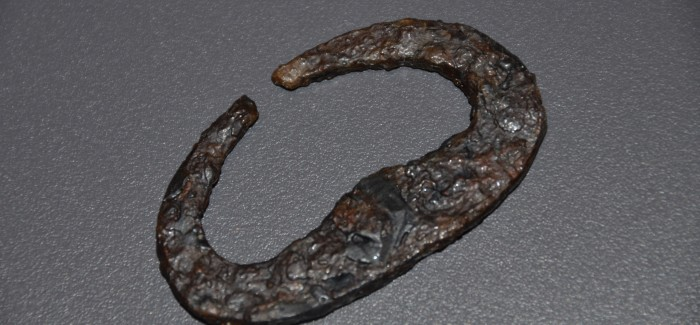 Odprtje arheološke razstave Železna pot – Dolga Planja na Voglu
