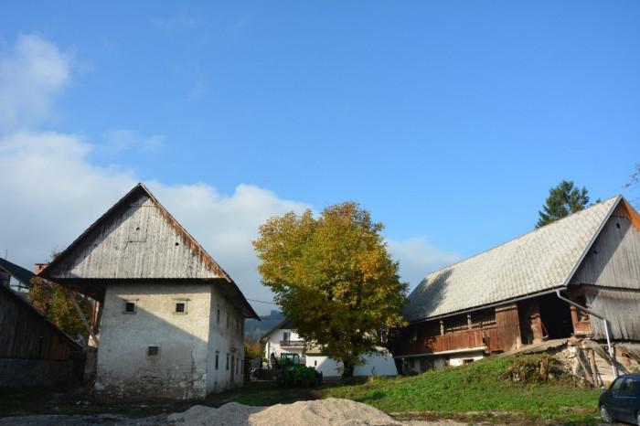 Voden ogled Mrakove hiše na Bledu