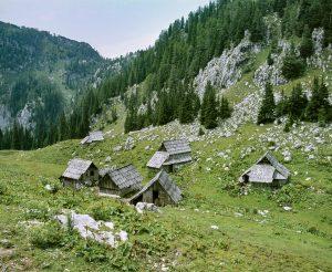 Odprtje razstave Bohinjske planine pred štirimi desetletji @ Mestna hiša