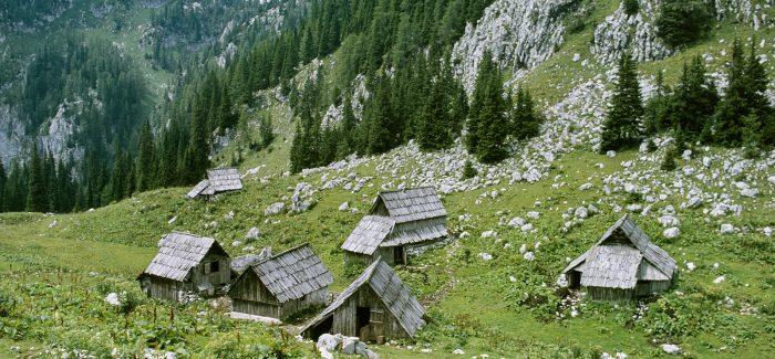 Odprtje razstave Bohinjske planine pred štirimi desetletji